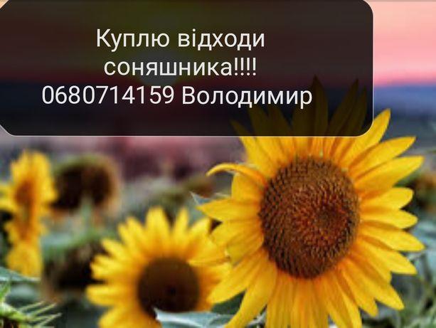 Відходи соняшника вся Україна