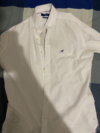 Camisa sacoor xxl