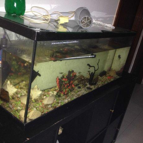 vendo aquário tem um metro de comprimento
