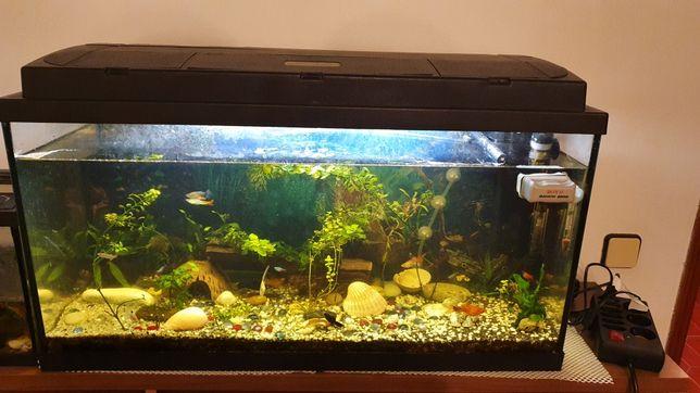 Aquario 96Litros