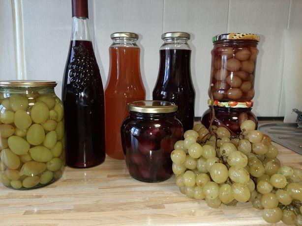 Виноград винный технический саженцы черенки