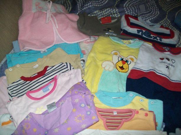 bluzeczki spioszki dziewczęce