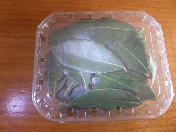 Folhas de louro para tempero culinário