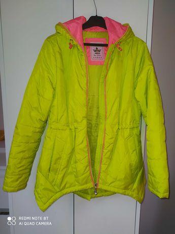 Zielona kurtka jesienna