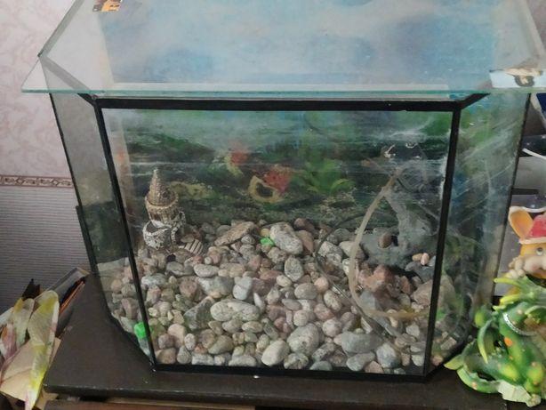 Продам аквариум на 50 литров