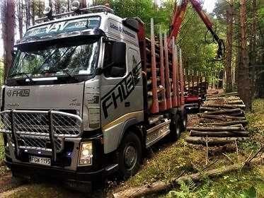Volvo fh12 do drewna