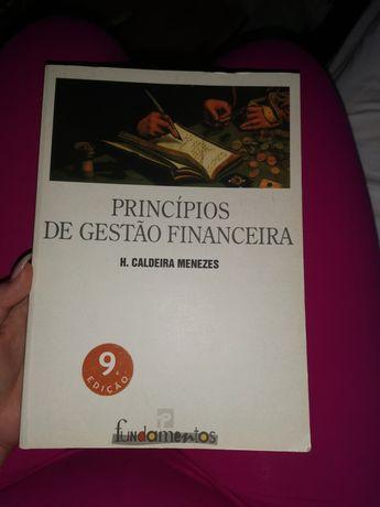 Princípios de Gestão financeira - Hélder Caldeira Menezes