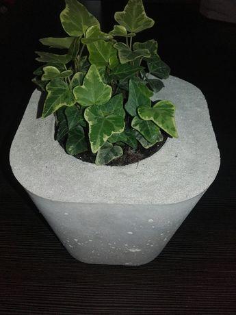Donica z betonu, doniczka, doniczki, miski dekoracyjne