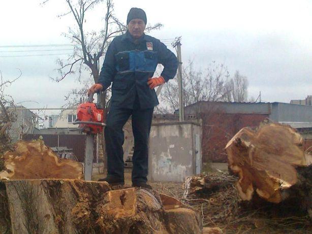 Спил деревьев Херсон Область Измельчение веток вывоз БЕЗ ПОСРЕДНИКОВ