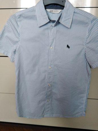 Koszula roz. 140,na uroczystości szkolne i nie tylko. Stan bardzo db.