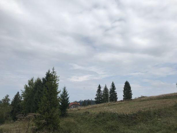 Земля Карпати с. Тухольня