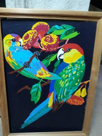Obraz przedstawia papuzki .