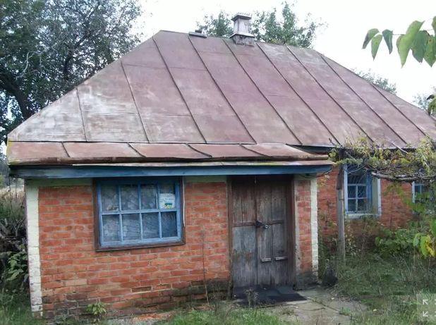 Старый дом с садом и огородом всего 45 соток с. Снитын Лубенский район