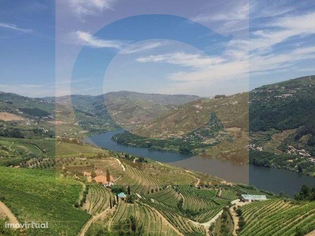 Quinta Região Demarcada do Douro