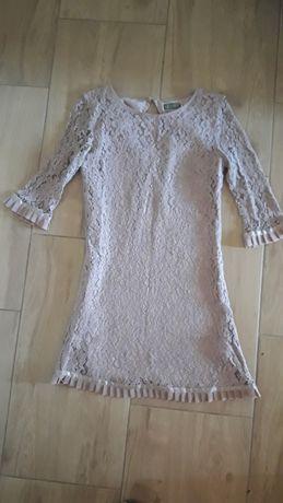 Koronkowa sukienka lipsy london rozmiar 12