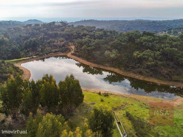 Herdade com 278 hectares em Portel, Évora