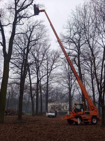 Wycinka drzew trudnych, pielęgnacja drzew, zrębkowanie