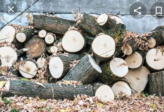 Пиляю деревья оценки от сложности. Дрова цена за куб от 150 до 300.