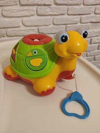 Сортер,каталка,Черепаха знайко