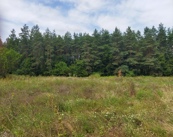 Участок 17 соток, примыкает к лесу (Старая Слобода, курортная зона)