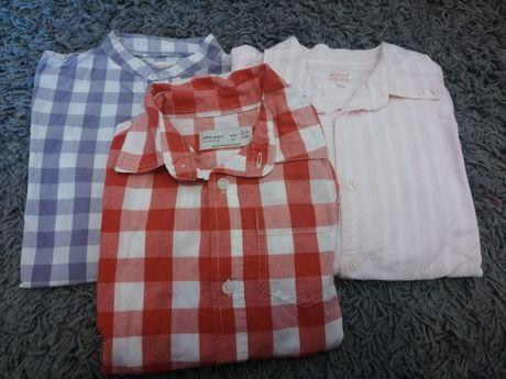 Camisas Menino anos 3/4 Zara e Gocco