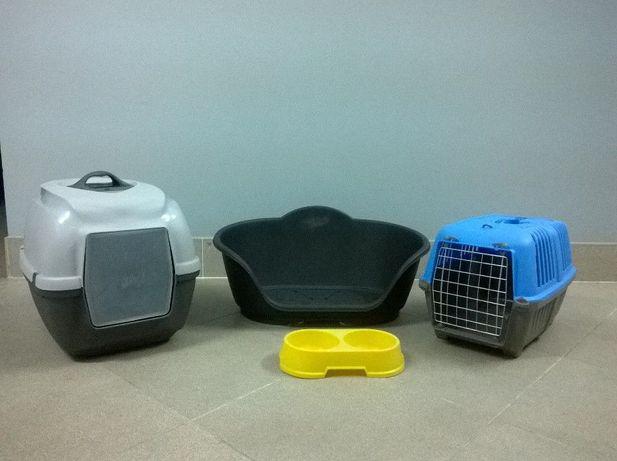 Conjunto de acessórios para gato