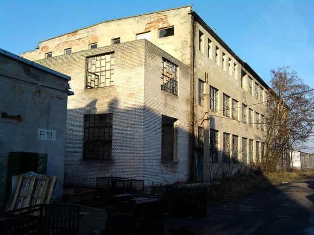 wynajmę hale , magazyny , pomieszczenia biurowe w Woli Krzysztoporskie