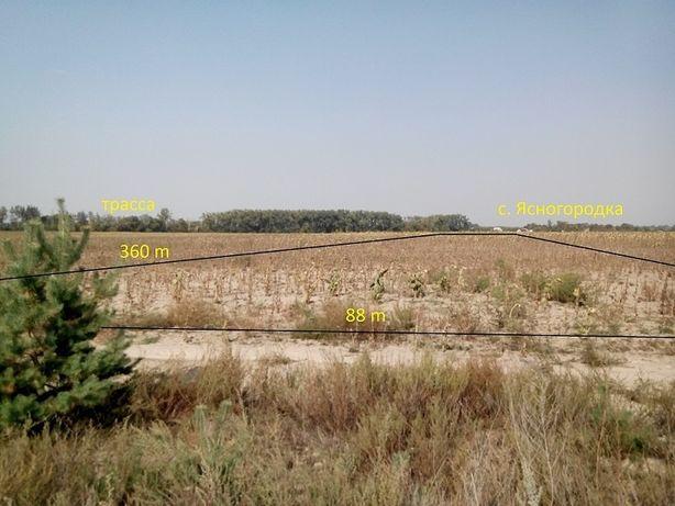 Ясногордка 3,16 гектаров ОСГ.