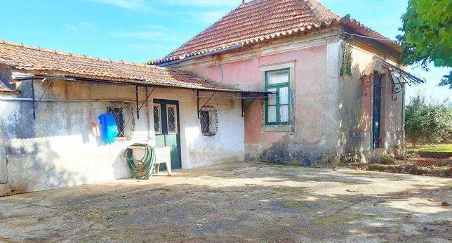Casa / Moradia / Vivenda - Loureiro - Oliveira Azeméis