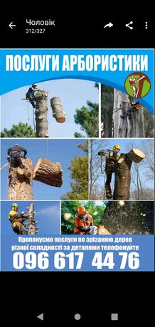 Обрізка дерев різної складності та форми