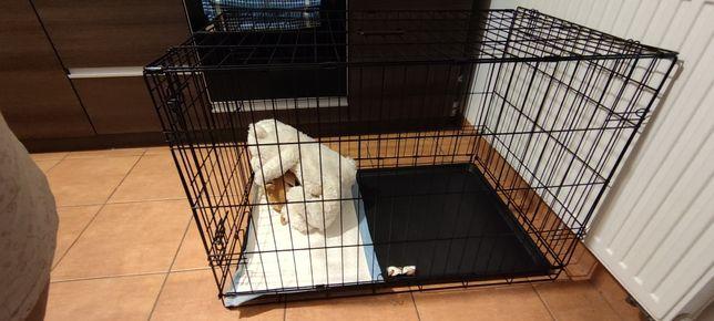 Sprzedam klatkę dla psa