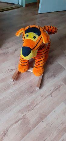 Tygrys na biegunach