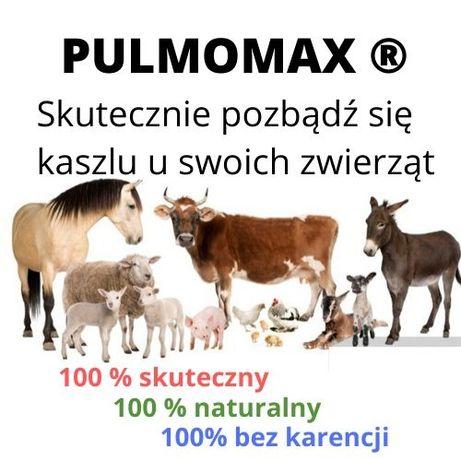 PULMOMAX – mieszanka paszowa skuteczna w chorobach układu oddechowego