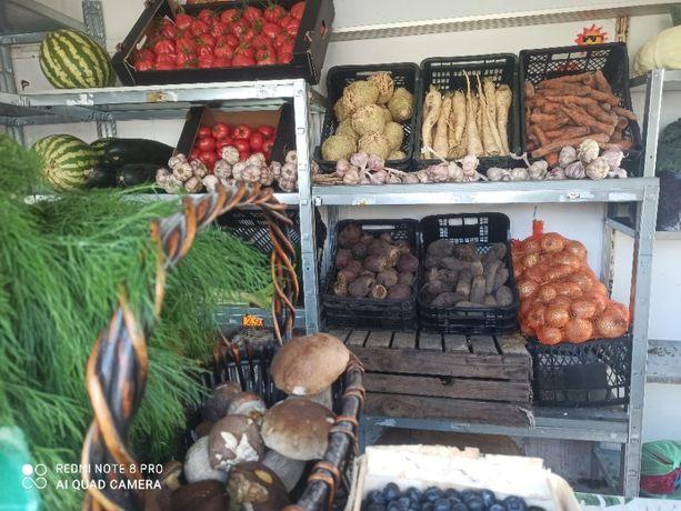 Jajka, ziemniaki, warzywa, owoce Oświęcim