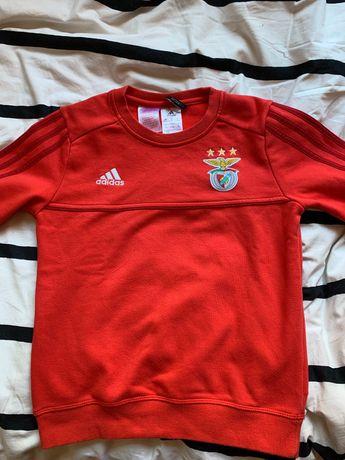 Sweat shirt Adidas Benfica
