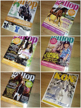 Gallop czasopisma