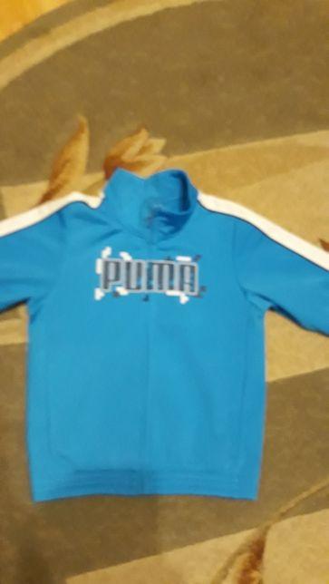 Bluza Puma adidas nike