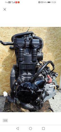 Suzuki gsf gsx 650 bandit silnik kompletny jednostka