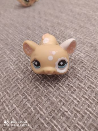 Littlest pet shop myszka