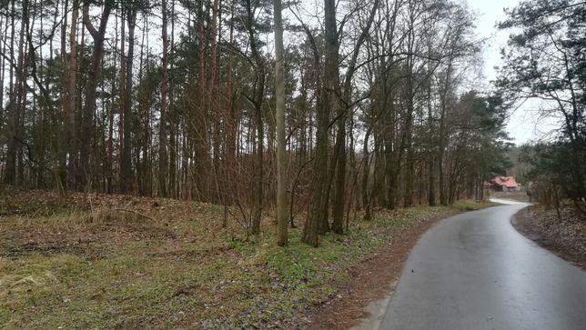 Działka leśna w m. Zdrojewo - ok 4400m2