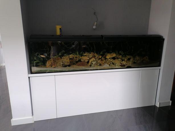 Akwarium 235x54x40 cały zestaw szkło, filtry, ryby, wapień filipiński