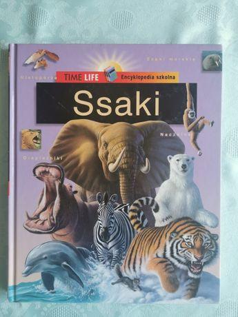 Encyklopedia szkolna - Ssaki