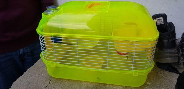 Casota hamster como nova