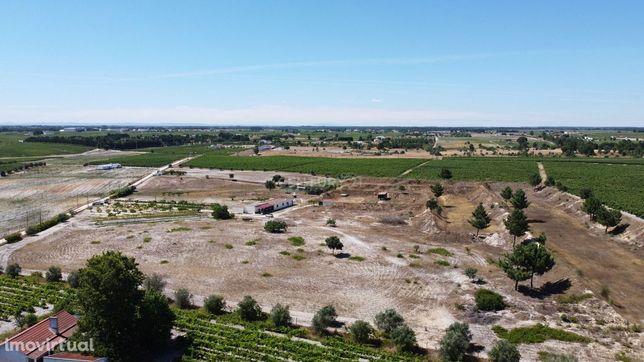 Terreno Rústico com 36.588 m2 em Poceirão - Palmela