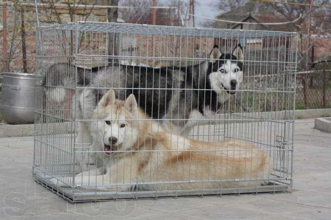 Усиленная переноска, вольер, клетка для собак №7, 118х70х80 ВОЛК-3