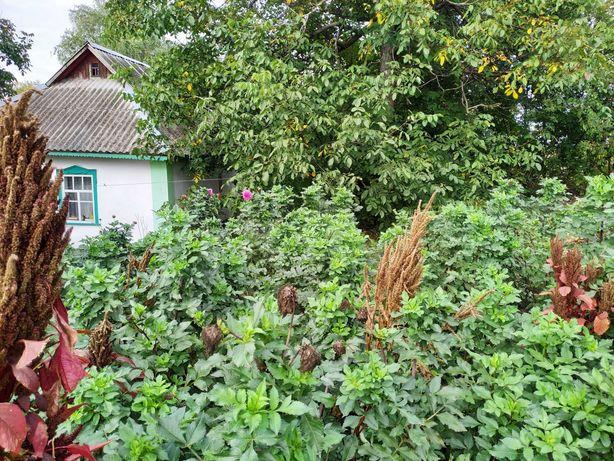 Продам дом в Киевской области, село Большая Березянка