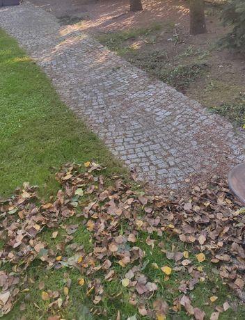 Grabienie, usuwanie liści, sprzątanie odkurzanie ogrodu,