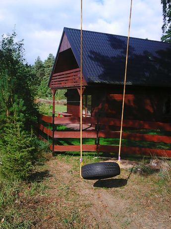 Duży samodzielny domek z kominkiem na Kaszubach.Lasy pełne grzybów.