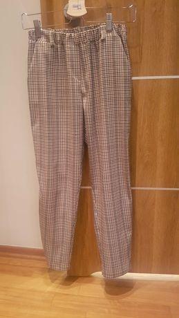 Spodnie 303avenue