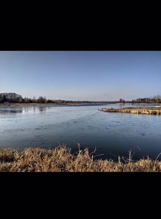 20га под экоферму теплицы ореховый сад прилегают к озеру Ворзель - изображение 1